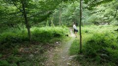 Trail Work 5